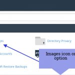 How to use Images Option in CPanel